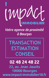 Impact Immobilier Bourges 8