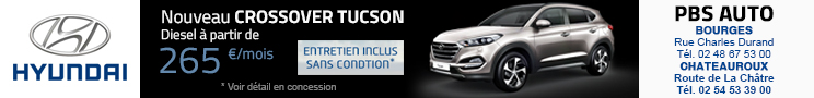 PBS Auto - Hyundai Bourges 11