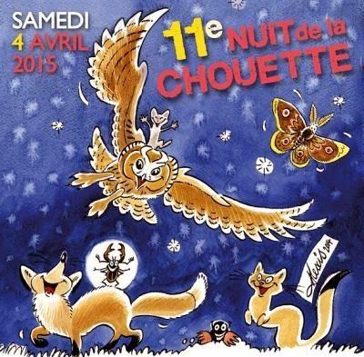11ème Nuit de la chouette