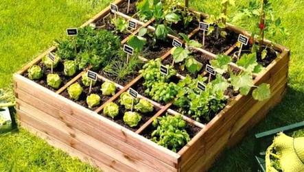 Installation d 39 un carr potager avec terreau vente - Vente privee jardinage ...