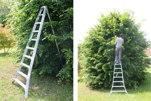 jouannin etha echelle fruiti re arboricole trepied alu bourges. Black Bedroom Furniture Sets. Home Design Ideas