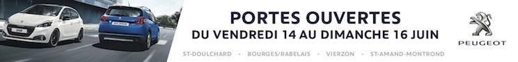 Peugeot groupe Vincent Bourges 2019