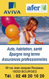 AVIVA Sorcelle Assurances Bourges 2020